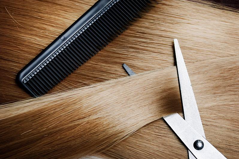 Shampooh's Haircuts